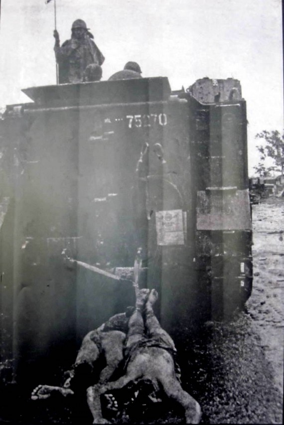 Dragging Viet Cong behind tank