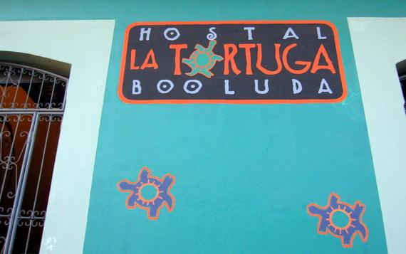 Tortuga Booluda Hostel - Leon, Nicaragua