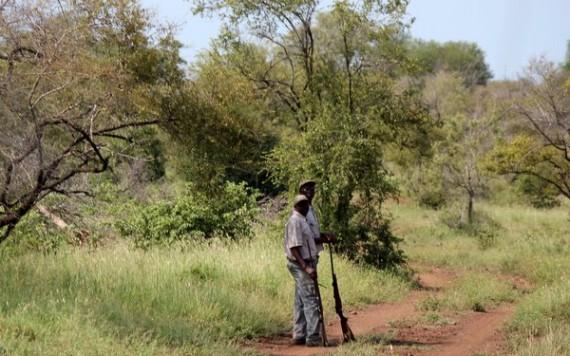 Exon the animal tracker - Kruger National Park