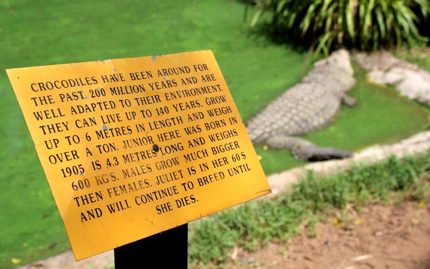 PheZulu Crocodile & Snake Park - South Africa
