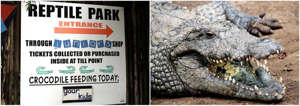 PheZulu Crocodile Park!