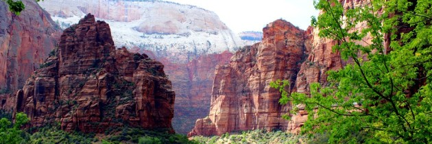 Zion National Park: 14 Stunning Photos That You Have To See!