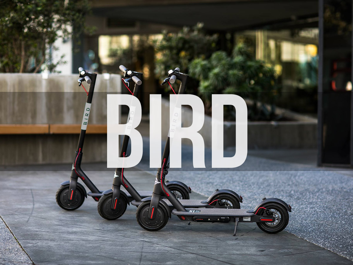 The Ultimate Guide to Electric Scooters in Mexico City +