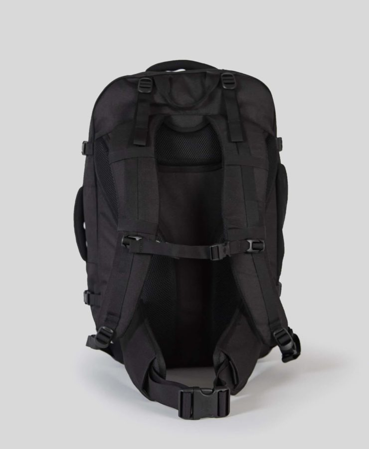 Prelude Travel Backpack_ Back