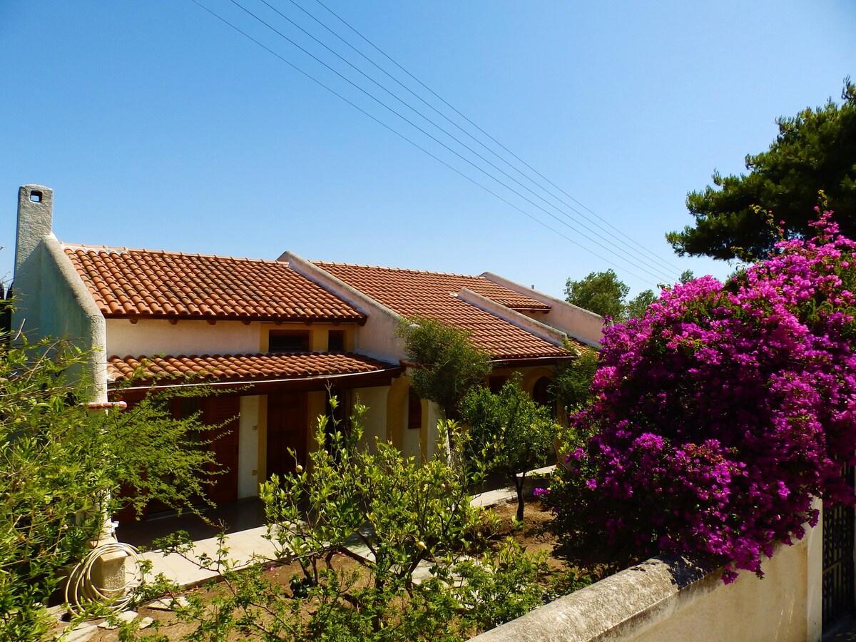 Traditional Aegina Home