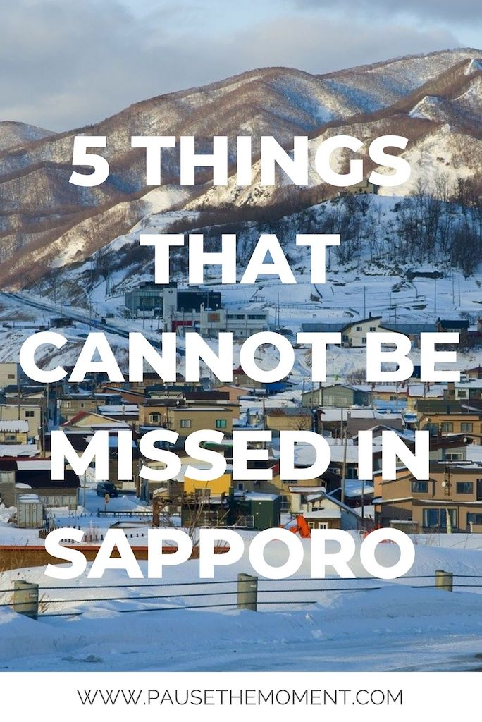 5 THINGS THAT CANNOT BE MISSED IN SAPPORO PIN